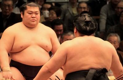Sumo: la lotta dei giganti