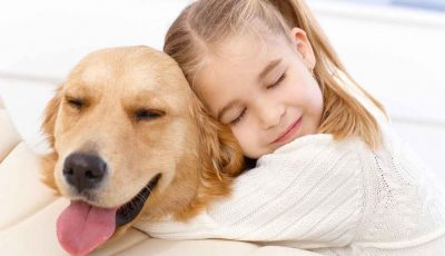 cani pet therapy: tipologie