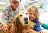 Pet Therapy cani: che cos'è?